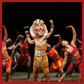The Lion King Photo Gallery